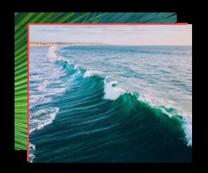 tropical ocean collage